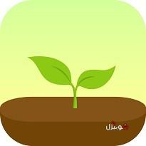 تحميل تطبيق فوريست Forest