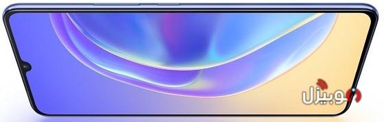 V21e Display